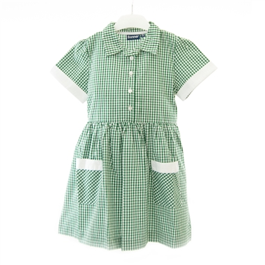 Green Gingham Button Front Summer Dress